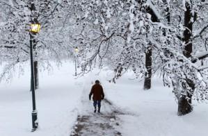 snow at Concordia