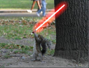 squirrel-lightsaber_thumb12